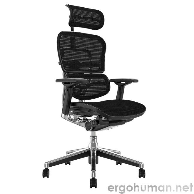 Ergohuman Elite Mesh Office Chair with Head Rest